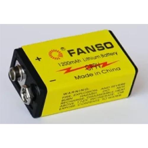 Lion Batteries CP9V 9v Lithium Battery